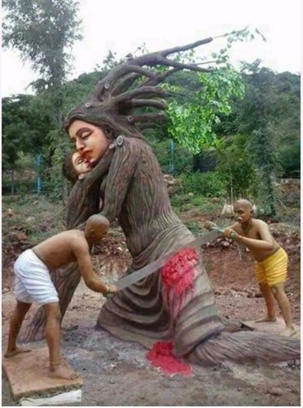 protéger la forêt