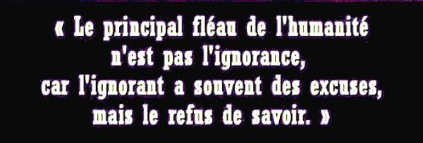VITRINE DES LIVRES DE THIERRY VAN DE LEUR