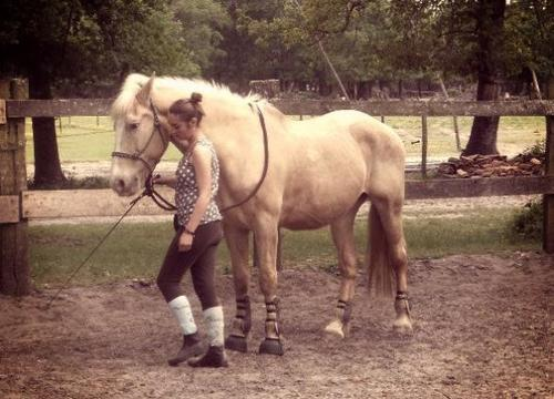 Je plains un homme sans vache,je plains un homme sans mouton,mais la question d'un homme sans cheval,dur pour lui de rester au monde longtemps...