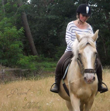 « Il n'y a pas de mauvais chevaux, il n'y a que de mauvais cavaliers. »