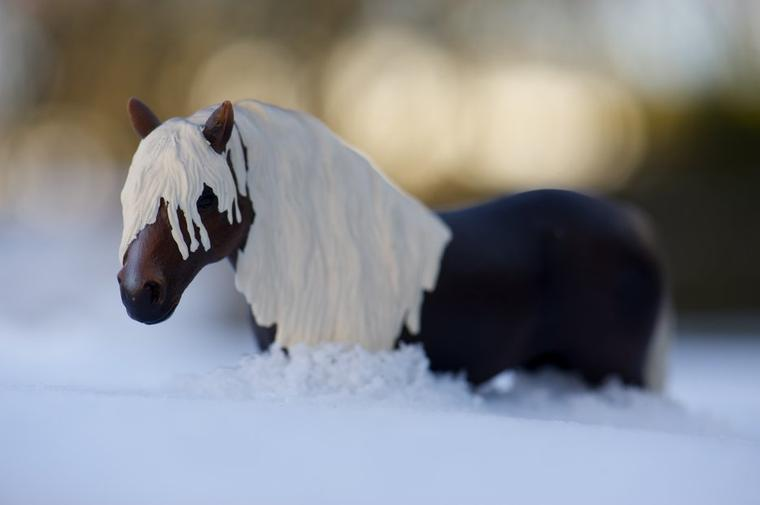 Les pieds dans la neige !