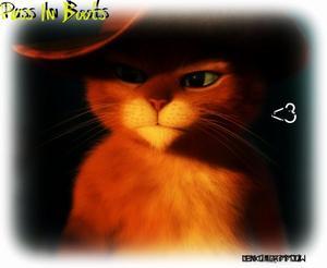 Puss in Boots x3.... (Le chat Potté)
