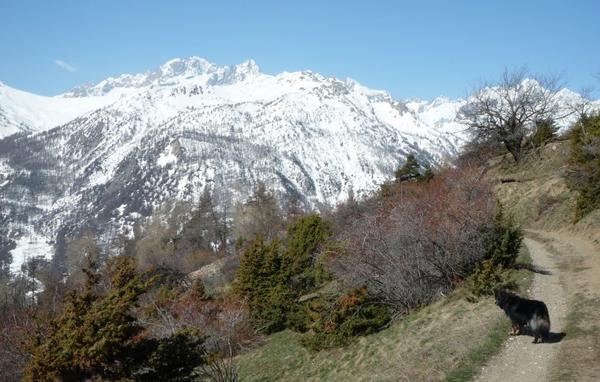 Flanelle se Balade au col du Granon - Mai