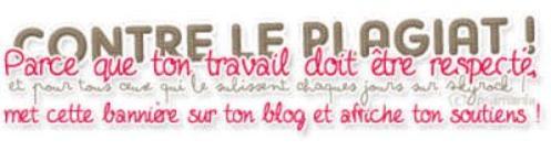 Les règle du blog :