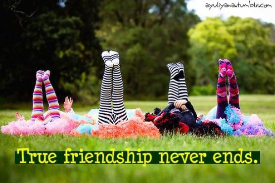 156 - L'amitié