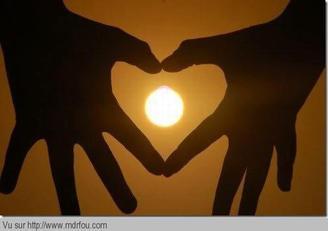 Cherche L'amour LE VRAI