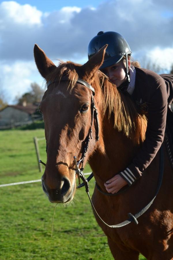...♥...  Regarde un cavalier sans son cheval, il lui manque la moitié de son sang  ...♥...