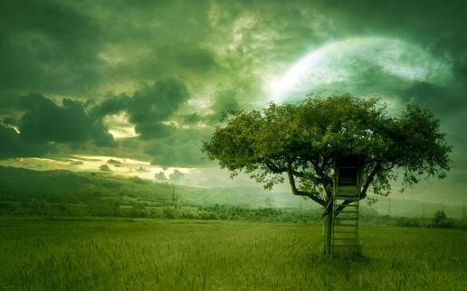 Un jour , William Shakespear a déclaré que nous étions faits de la même matière que les rêves  et si c'était vrai ?