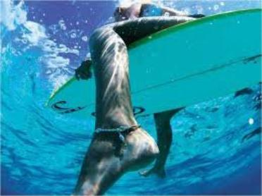 si tu ne peu arrêter la vague, apprend a surfer.