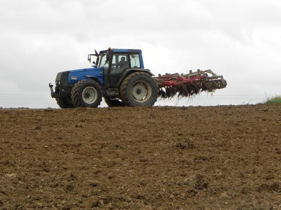 semis d'engrais vert et déchaumage