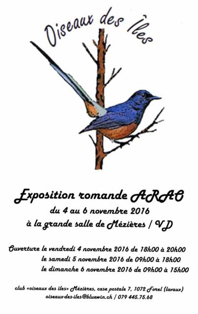 Exposition.