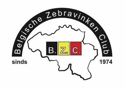 Belgique Zebra club.