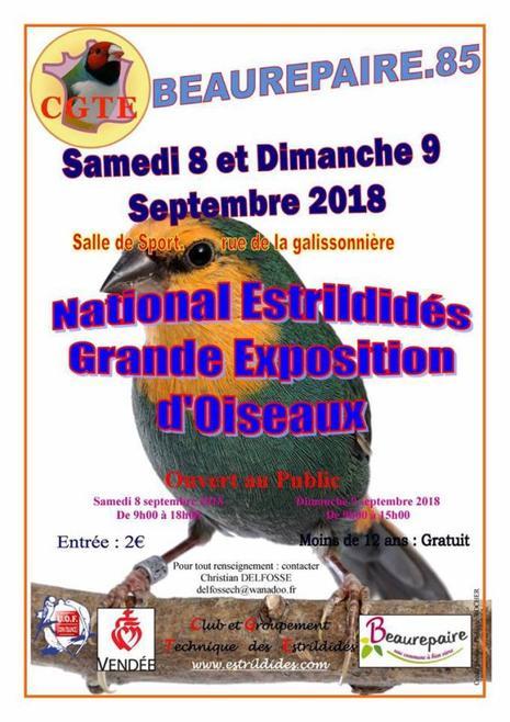 National Estrilldidés.