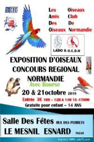 Régional CDE et UOF.