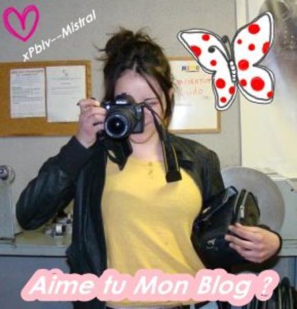 Article 9 : # Aime tu mon Blog ?
