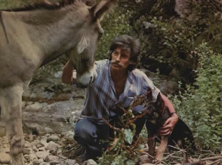 """1976) Jean FERRAT avec son chien """" Ouralou """" et son âne """" Justice Sociale """" à Antraigues-sur-Volane (07530)"""