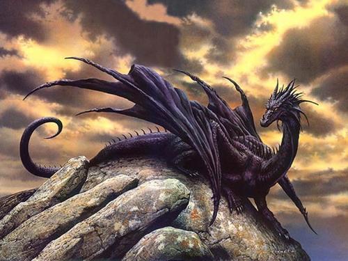 Chapitre20: Le dragon noir.
