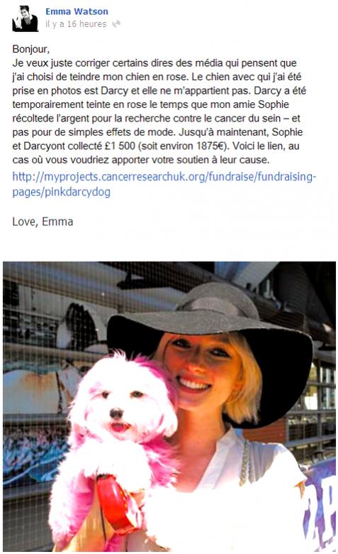 . ● Emma a été injustement accusée d'avoir mal respecté Darcy, le chien de Sophie et clarifie une fois de plus la situation, mais cette fois-ci sur Facebook..