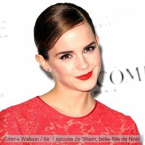 """. News à propos du nouveau projet d'Emma """"Noah"""" (l'Arche de Noé).."""