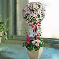 Introduction And Overview Of Singapore Florist