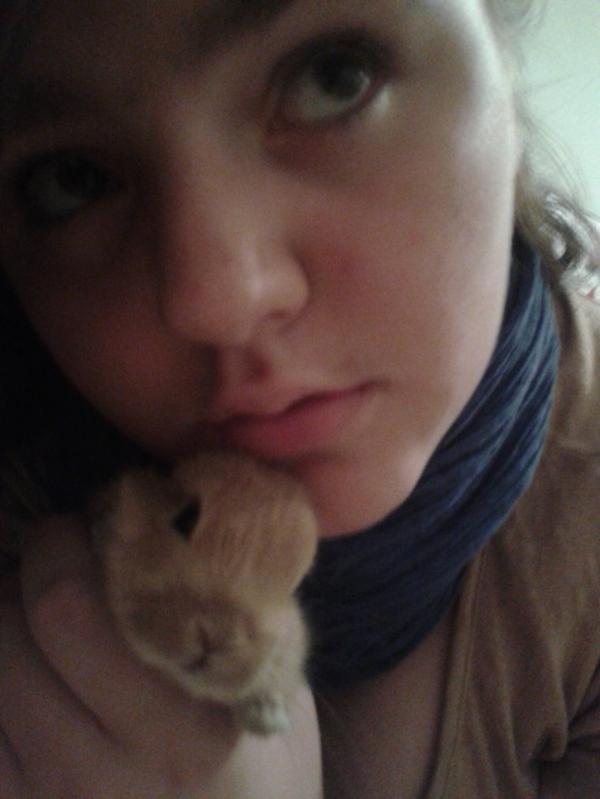 Mon petit Lapin nain <3
