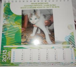 LES CALENDRIERS 2013