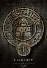 Tenues Hunger Games