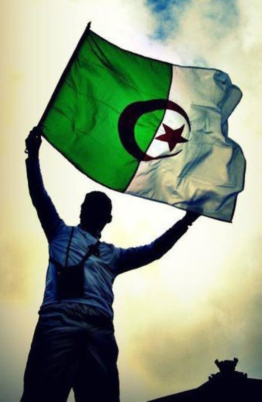 DiMA vive L'ALGERIE