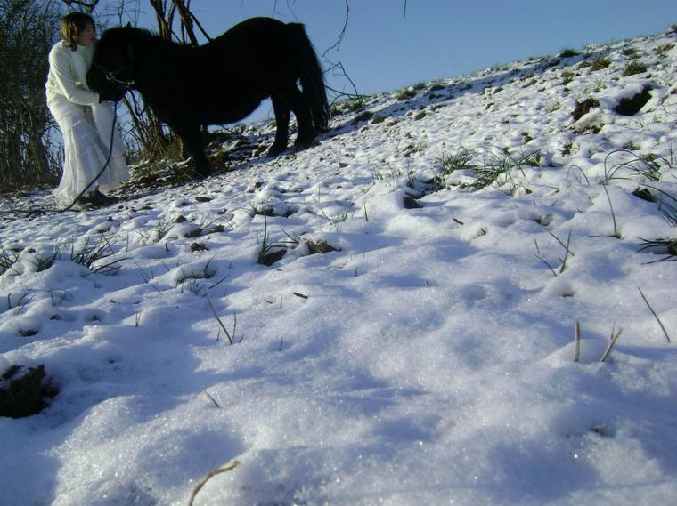 mascotte dans la neige