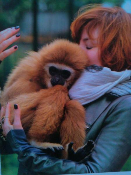 La photo du jour : c'est Monkey Me