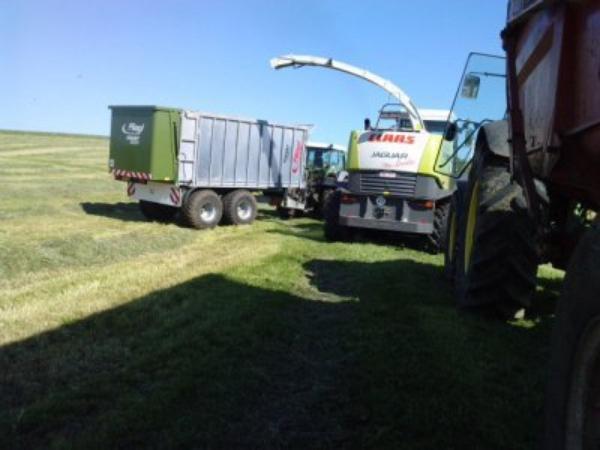 Ensilage d'herbe.