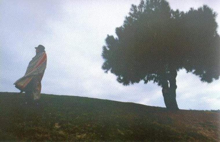Mélange n°2