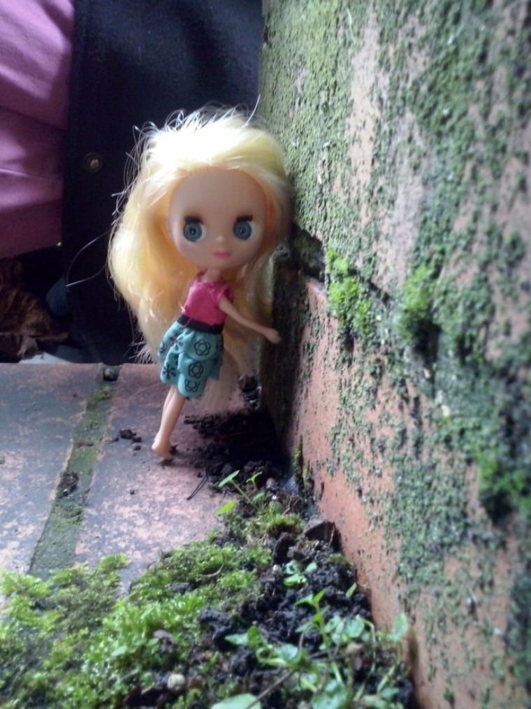 Cacilie et moi nous sommes allées faire des photos avec une de mes blythe à un magnifique endroit et aussi a ma cave x)