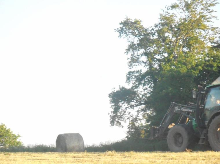 ramassage des rounds au bord du champs avec agrotron 85MK3