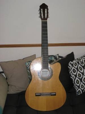 les guitare que je possède