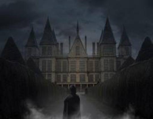 harry potter chapitre 2: Les liens du sang