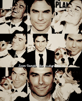 ZOOM-VAMPIREDIARIES.SKYROCK.COM || ICONS IAN SOMERHALDER