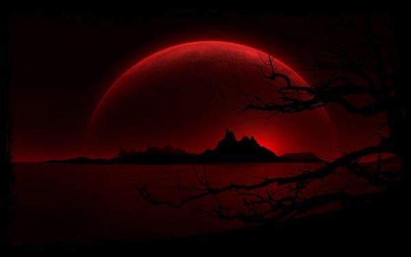 Hunter - Chapitre I : La naissance des êtres du mal, au c½ur pur et innocent