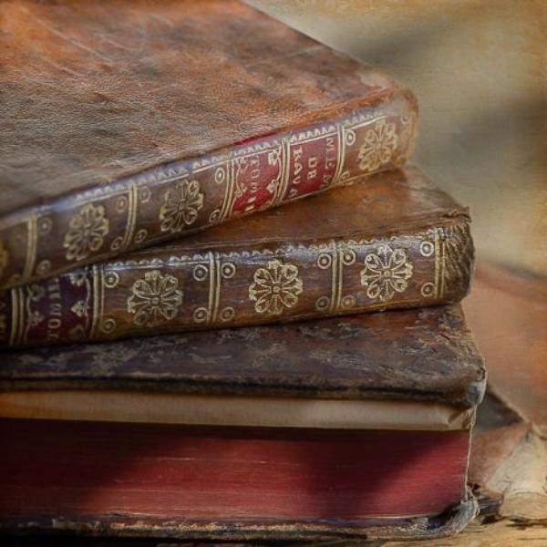 Fiction n°1 (de Wendy) : Avis de sorcière. CHAPITRE 3.