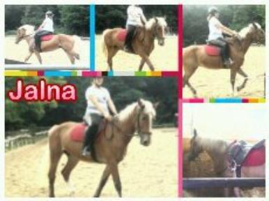 Tous sur Jalna