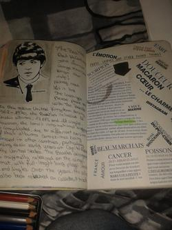 ~ My Wreck This Journal ~