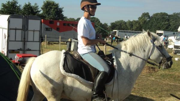 Photos de la Randonnée régionale du Lion d'Angers ; du lundi 27 au vendredi 31 août 2012 : les poneys