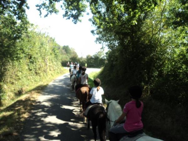 Randonnée régionale poney pays de Loire 2013 (La Plaine sur Mer)