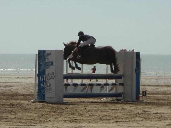 Caval'Océane 2013 : CSO : prix Perrosel (Amateur 1 vitesse 1, 15m)