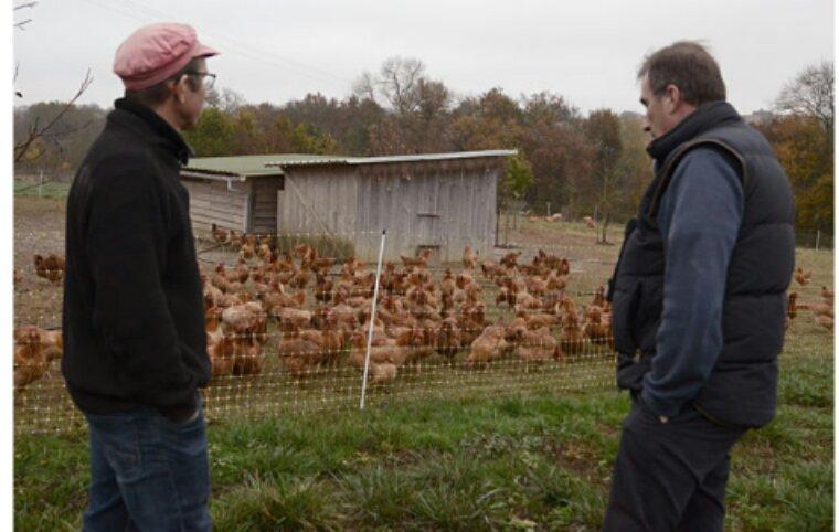 Le contrôle annuel des fermes bio, un garde-fou nécessaire mais menacé