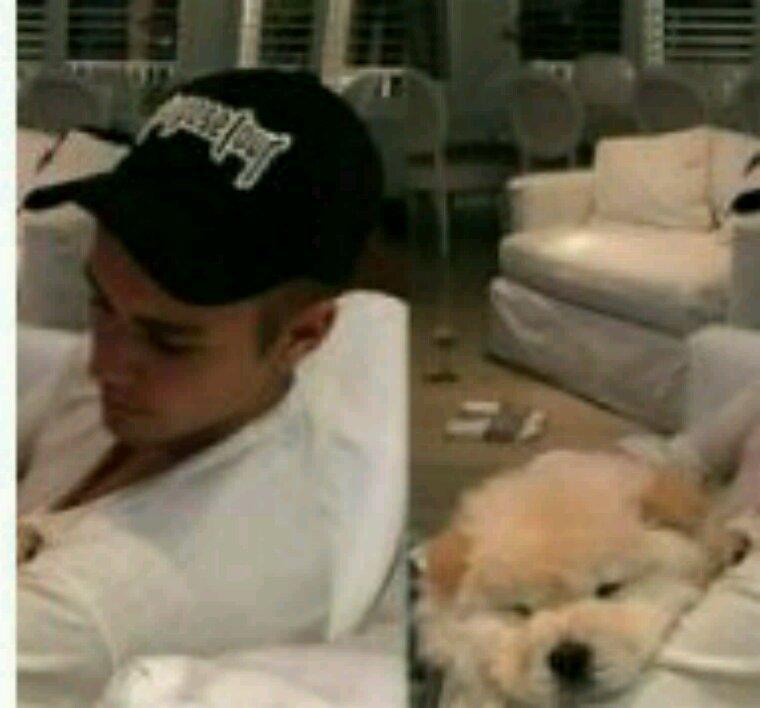 Justin Bieber abandonne le chiot qu'il vient d'adopter après que le vétérinaire lui diagnostique une maladie