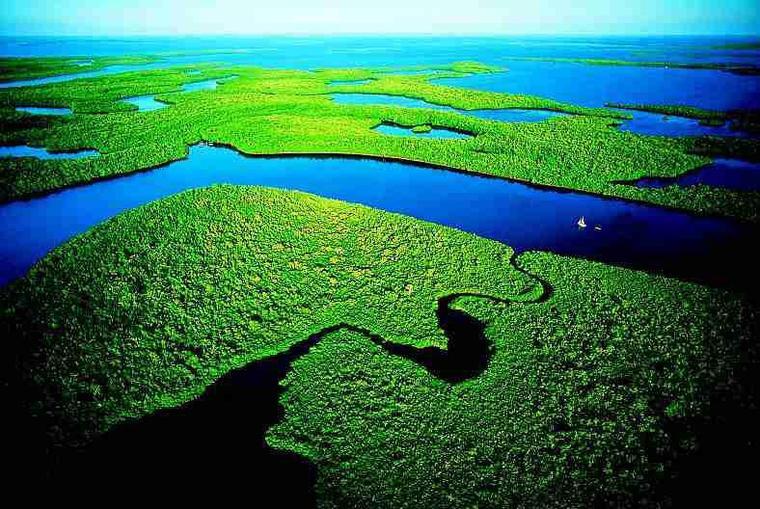 Monté des eaux dans les Everglades