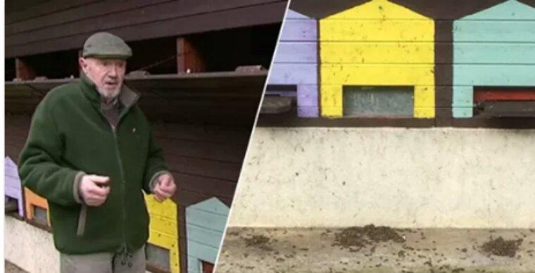 En Moselle, il est illégal d'interdire l'utilisation des pesticides tueurs d'abeilles
