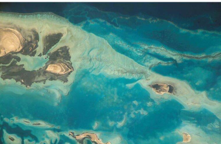 La température des océans grimpe trop vite et ça n'annonce rien de bon…