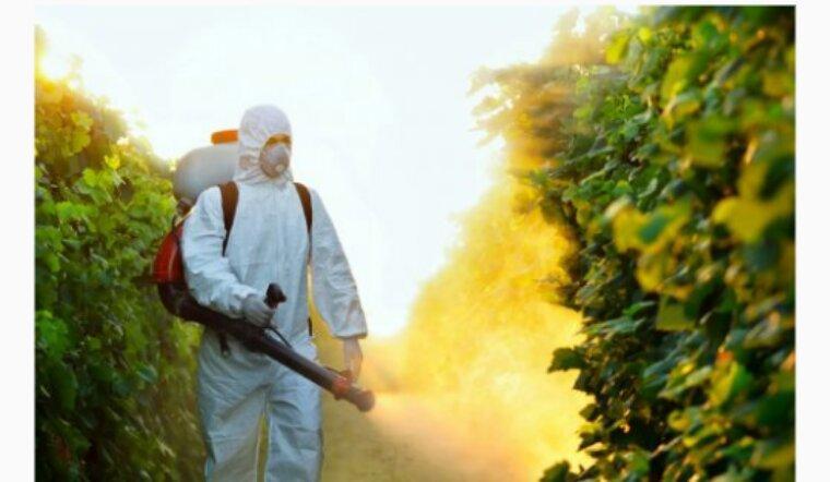 En Charente, le maire qui voulait interdire les pesticides a perdu sa bataille